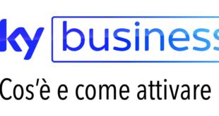 Sky Business Cos e Attivazione